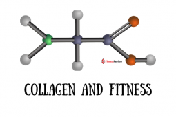 Collagen and Fitness Guide